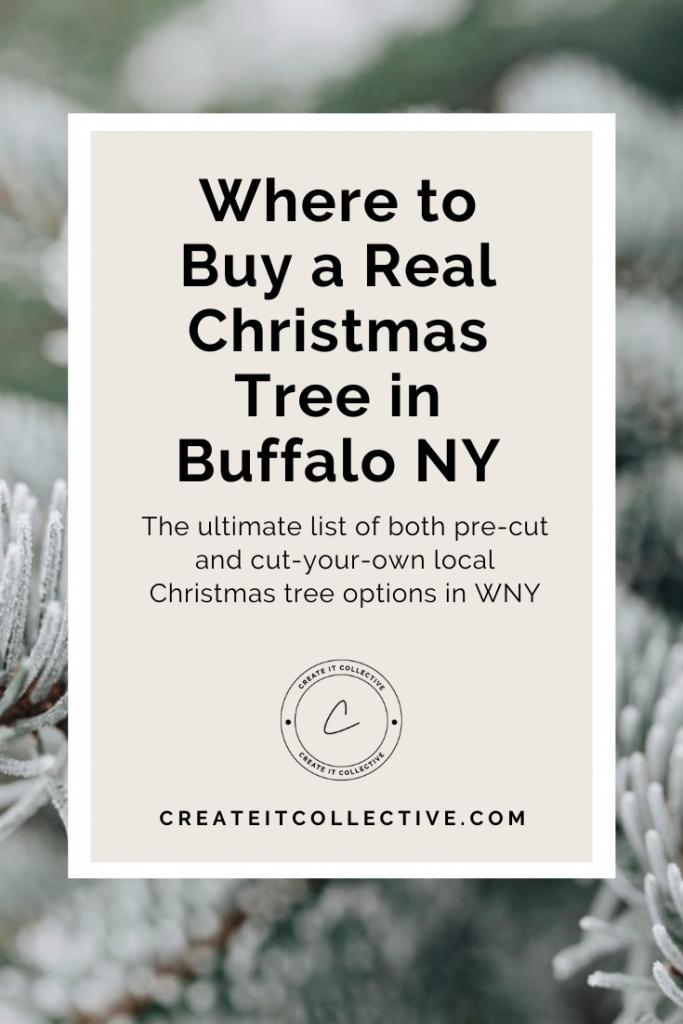 Where to Buy a Real Christmas Tree in Buffalo NY Guide